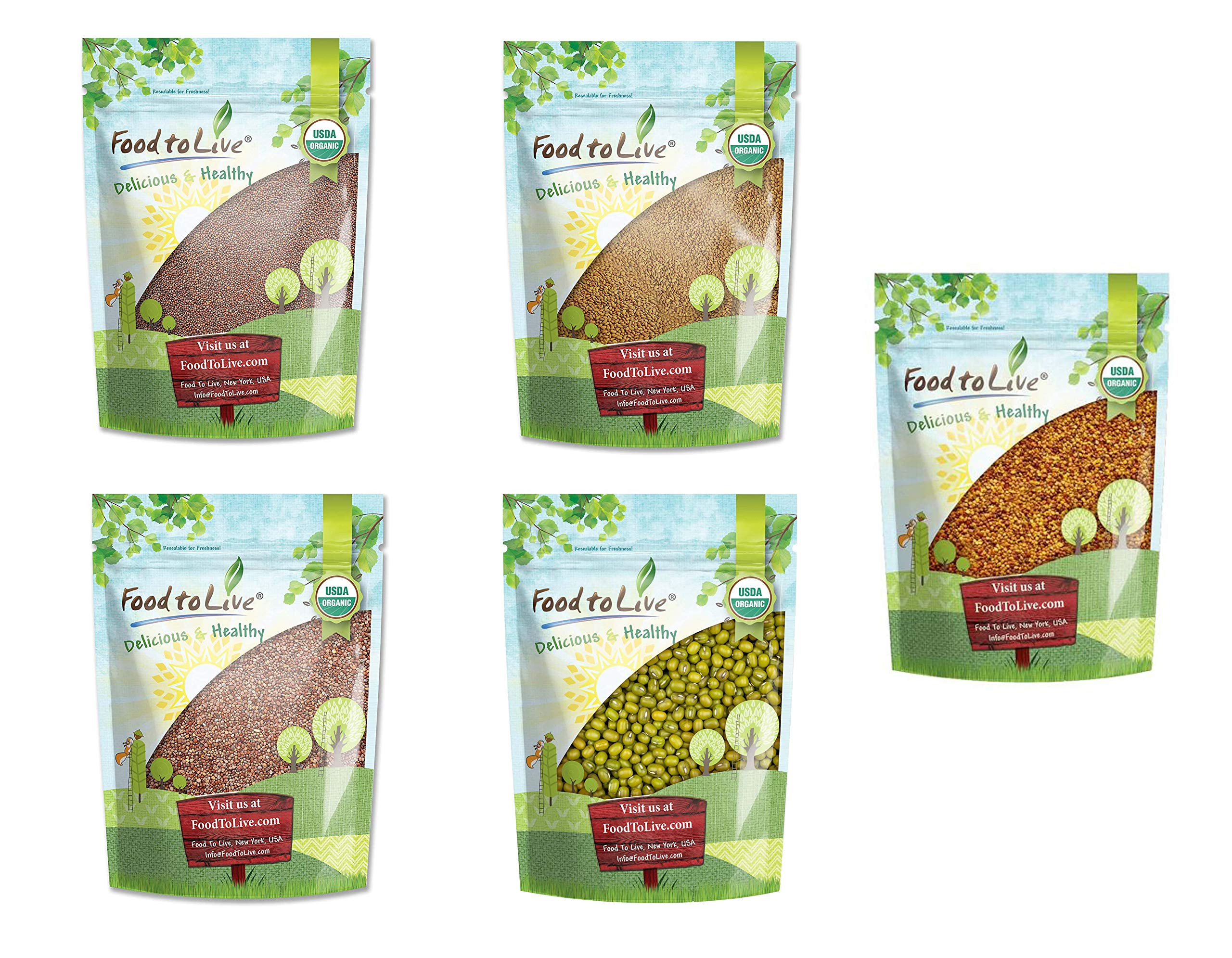 Organic Sprouting Seeds in a Gift Box - A Variety Pack of Broccoli Seeds, Alfalfa Seeds, Radish Seeds, Mung Beans, Clover Seeds by Food to Live
