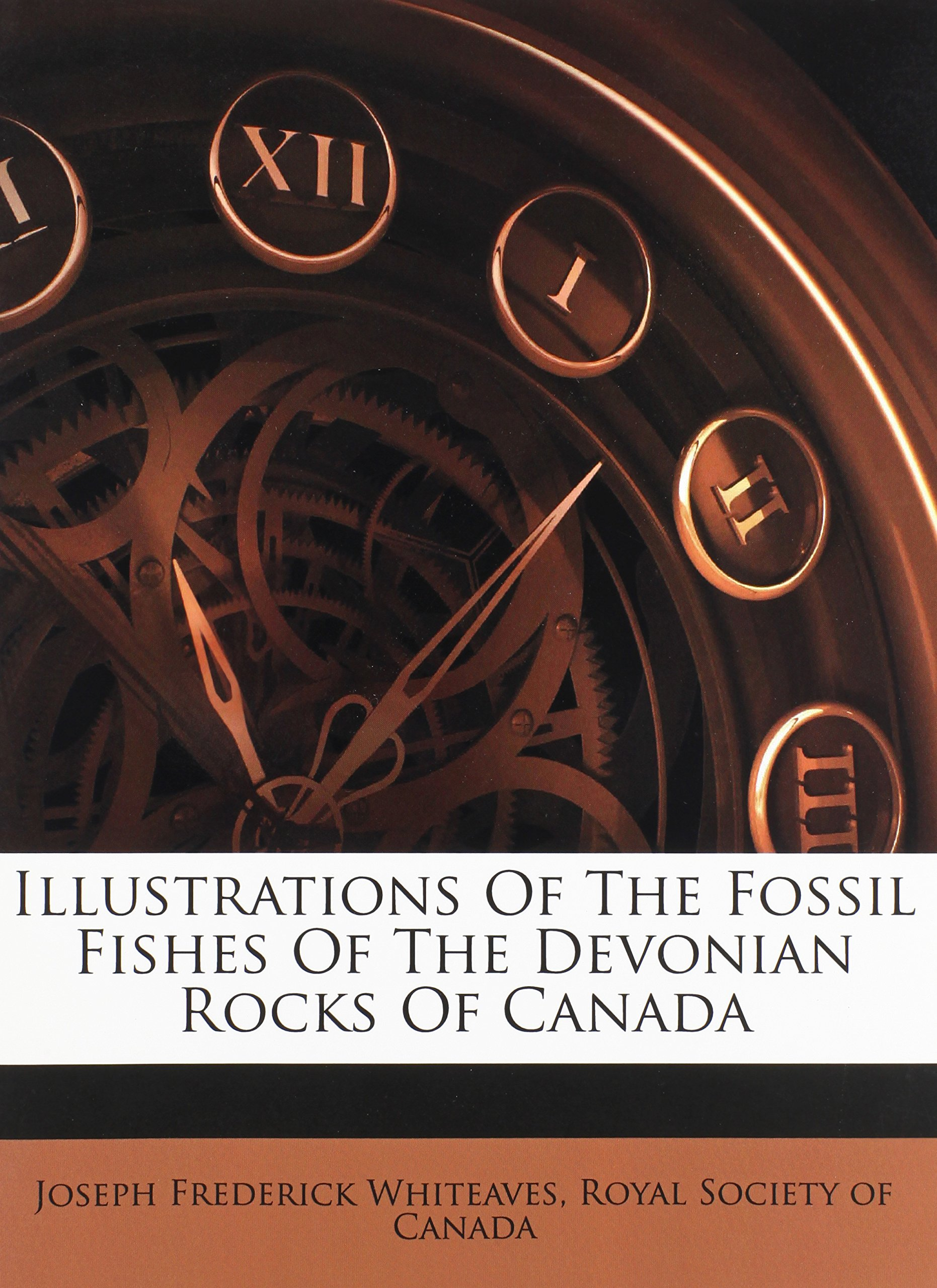 Download Illustrations Of The Fossil Fishes Of The Devonian Rocks Of Canada pdf epub