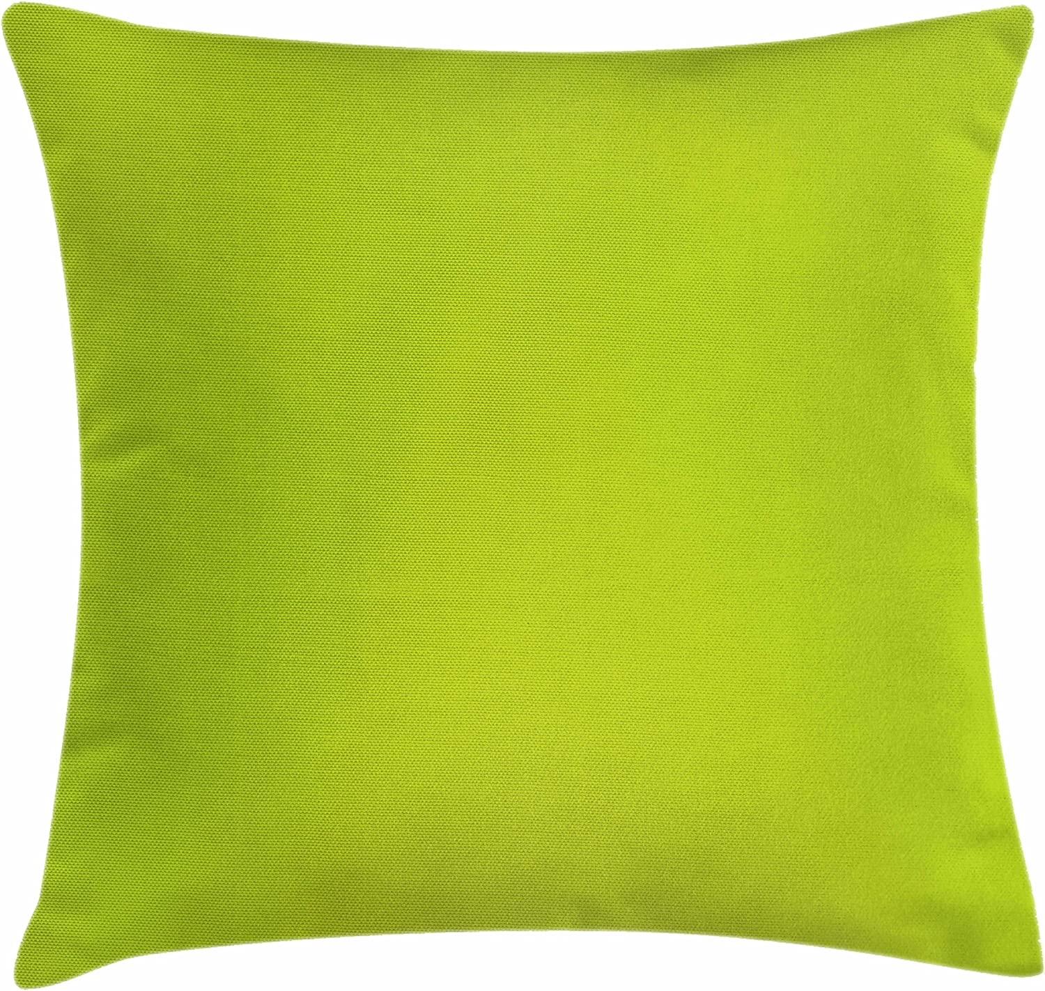 """Ambesonne Lime Green Throw Pillow Cushion Cover, Empty Backdrop Blurry Off Focus Pastel Toned Shade Color Spring Theme Abstract, Decorative Square Accent Pillow Case, 16"""" X 16"""", Apple Green"""