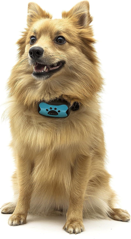 kein Schock 7 einstellbare Stufen Anti-Bell-Halsband Training und Anti-Bell-Halsband Unbekannt Topdog Hundehalsband harmlos und menschlich 2 Farben Gesicht Advanced 2-in-1 in 1