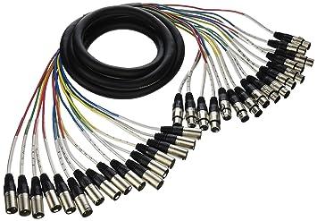 Amazon.com: Seismic Audio - 16 Channel XLR Snake Cable - 10 Feet ...
