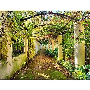 Fototapete Garten Natur 3D Vlies Wand Tapete Wohnzimmer Schlafzimmer Büro  Flur Dekoration Wandbilder XXL Moderne Wanddeko - 100% MADE IN GERMANY - ...