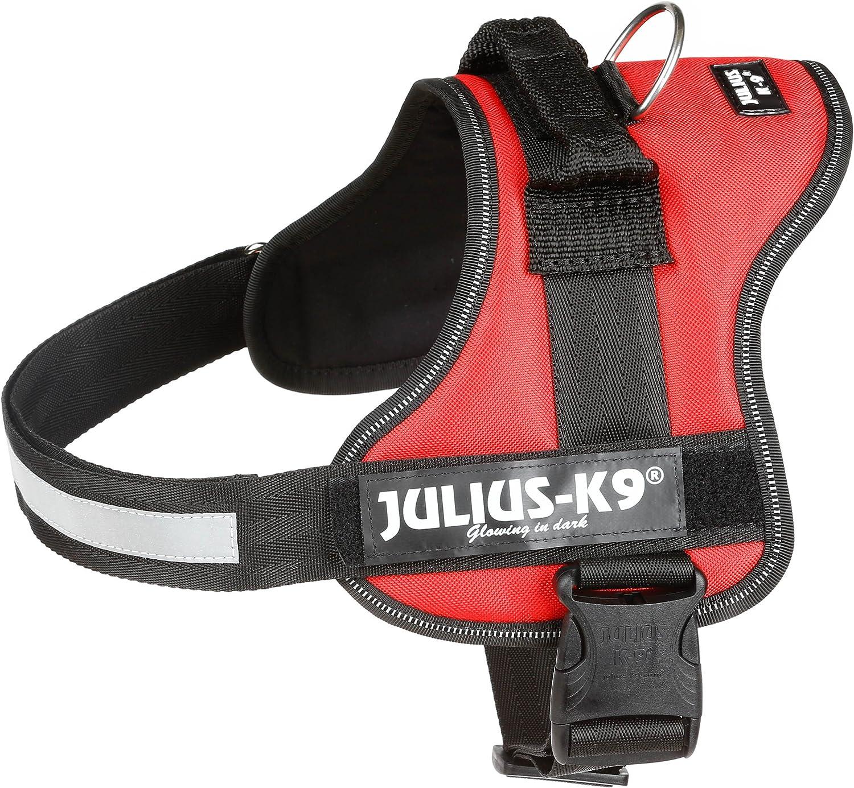 Julius-K9, Talla 0, 58-76 cm, Rojo: Amazon.es: Productos para mascotas