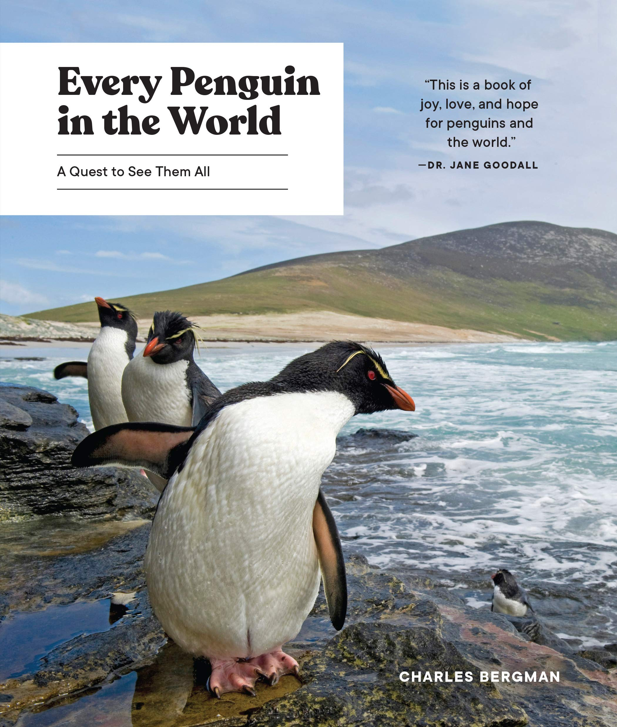 Every Penguin in the World: A Quest to See Them All by Sasquatch Books