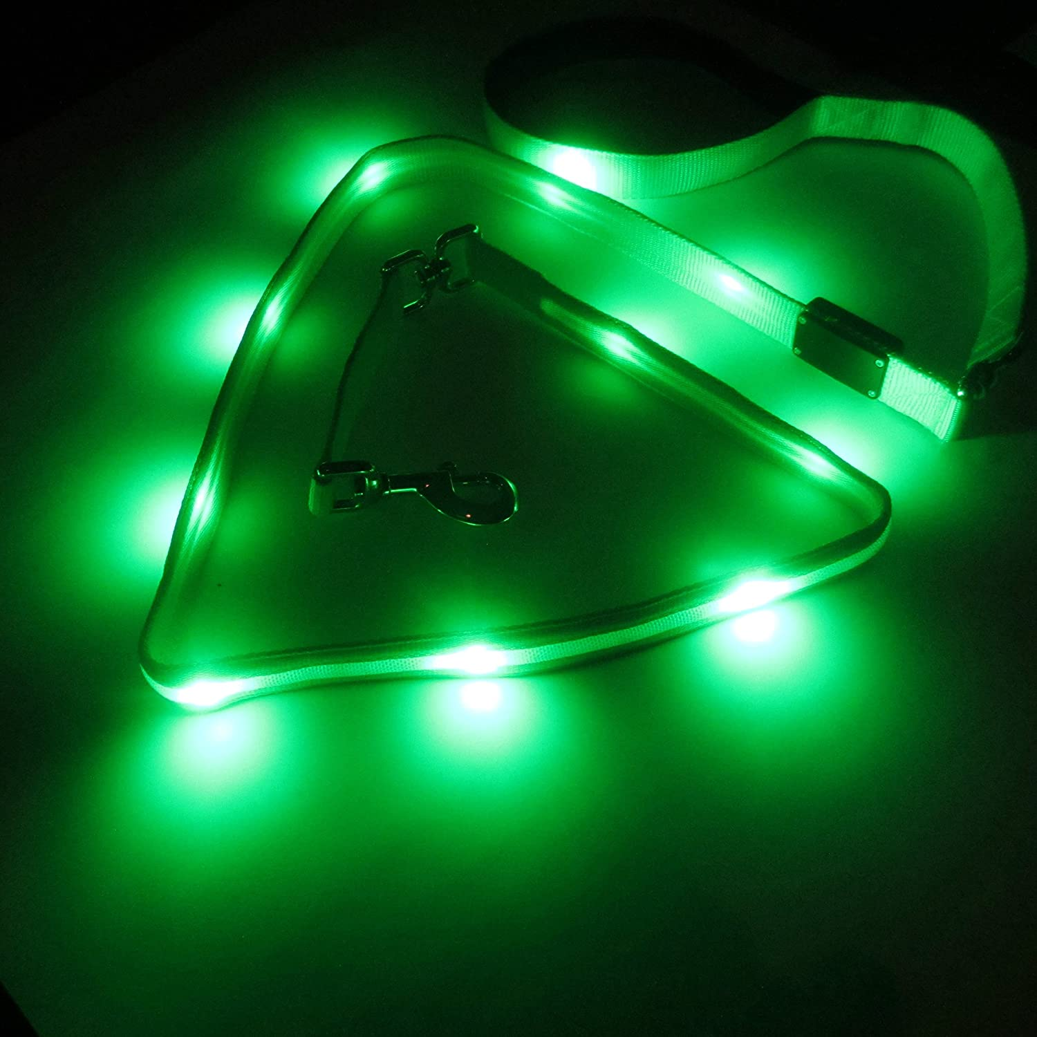 Green Large Green Large Blazin' Safety LED Dog Leash USB Rechargeable Flashing Light, 6 Ft, Water Resistant Avoid Danger Green
