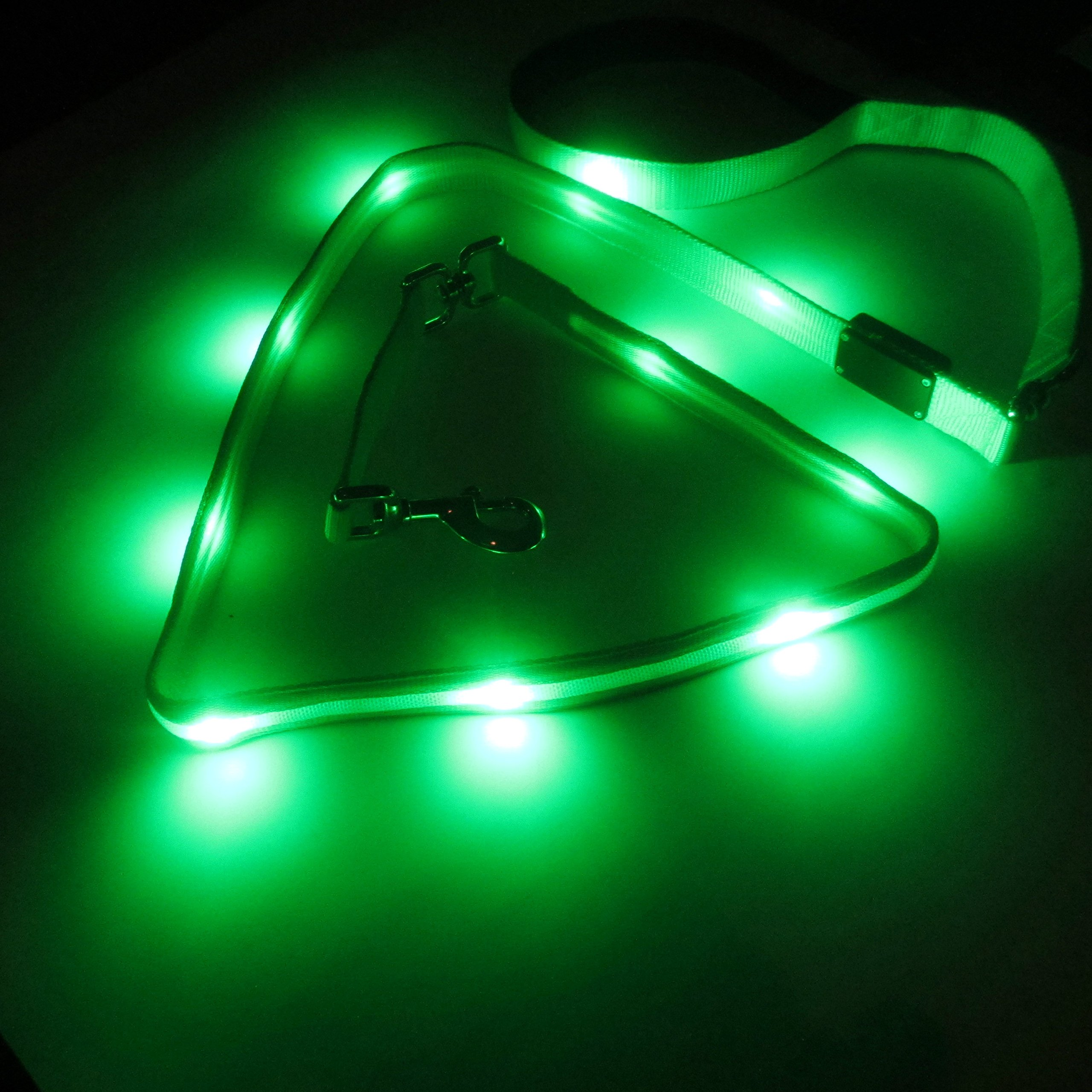 Blazin' Safety LED Dog Leash - USB Rechargeable Flashing Light, 6 Ft, Water Resistant - Avoid Danger - Green by Blazin' Bison