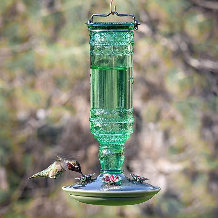 Perky-Pet-8108-2-Glass-Hummingbird-Feeder