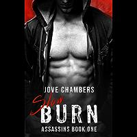 Slow Burn (Assassins Book 1) (English Edition)