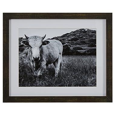Modern Black and White Photo of Bull in Charcoal Frame, 22  x 18