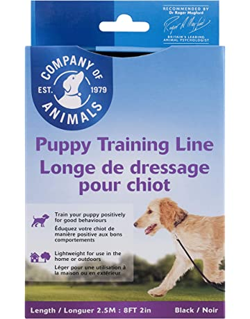 Amazon co uk | Training Leads for Dogs