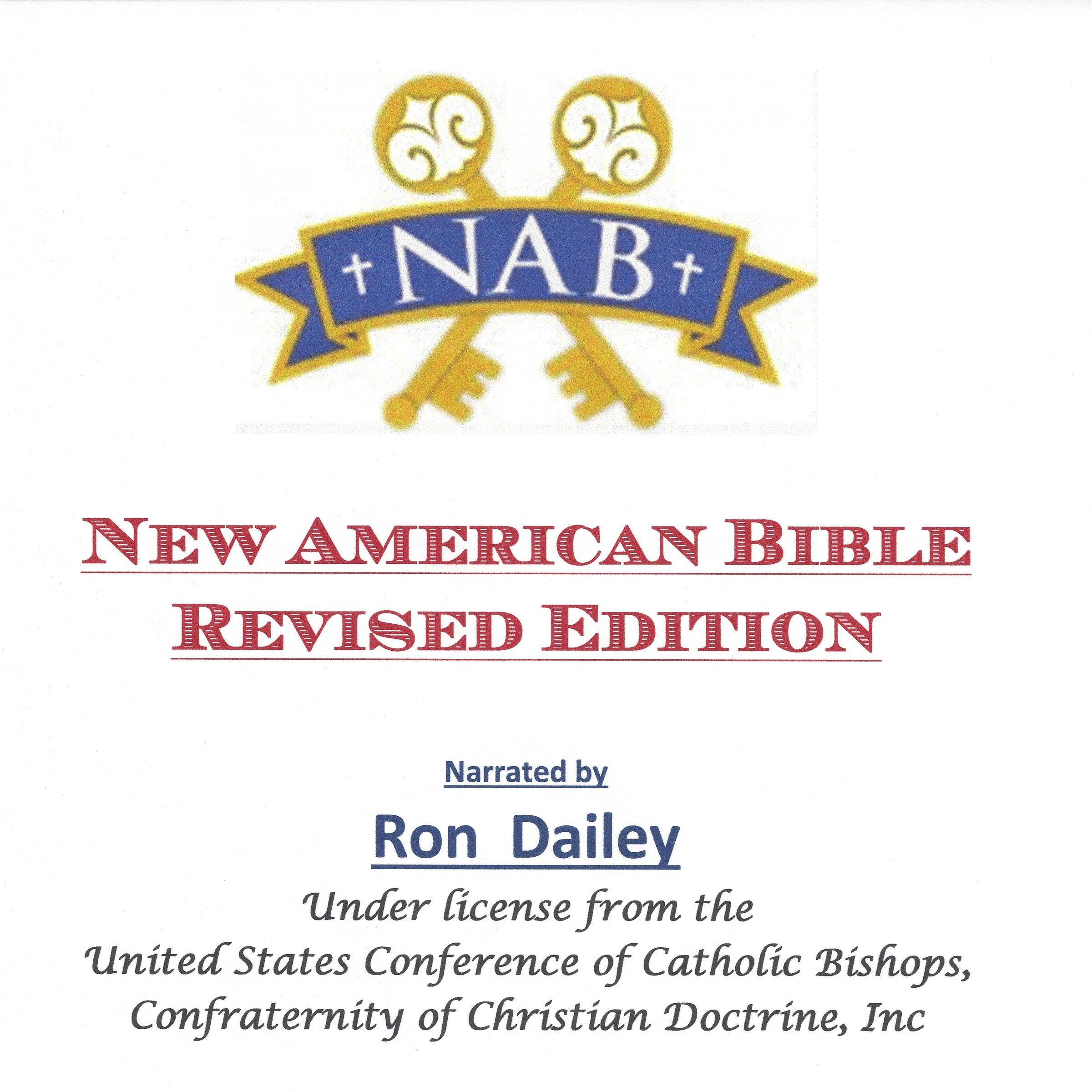 Catholic Audio Bible CD Set - NABRE: Amazon com: Books