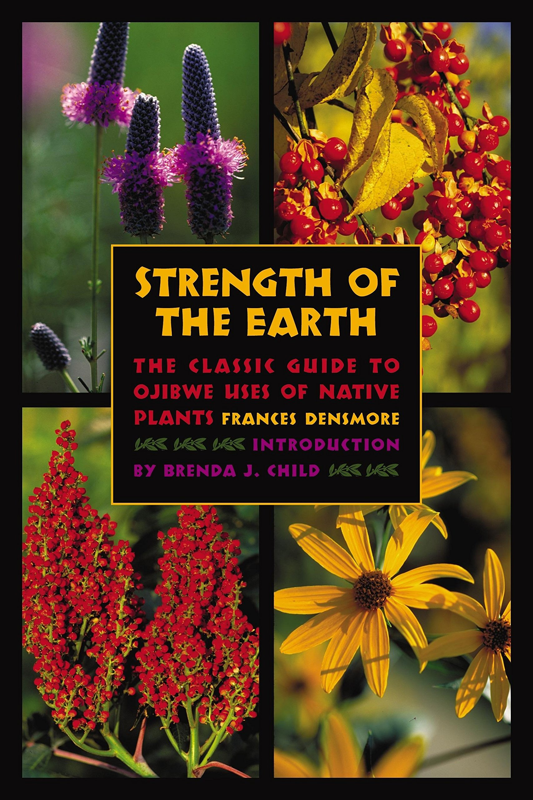 Strength of the Earth: The Classic Guide to Ojibwe Uses of Native Plants pdf