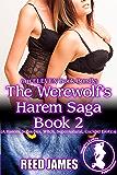 The Werewolf's Harem Saga Book 2 (An ELEVEN Book Bundle): (A Harem, Succubus, Witch, Supernatural, Cuckold Erotica)