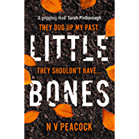 Little Bones: The most chilling serial killer thriller you'll read this year book cover