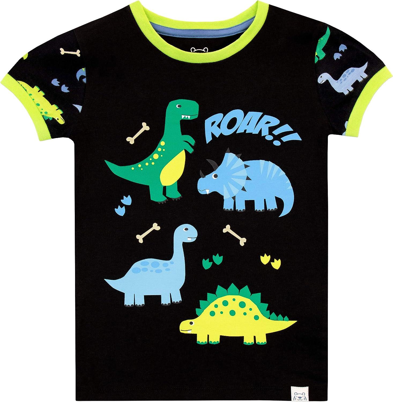 Harry Bear Boys Dinosaur Pajamas