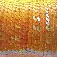 90 M de lentejuelas bordillo - rollo
