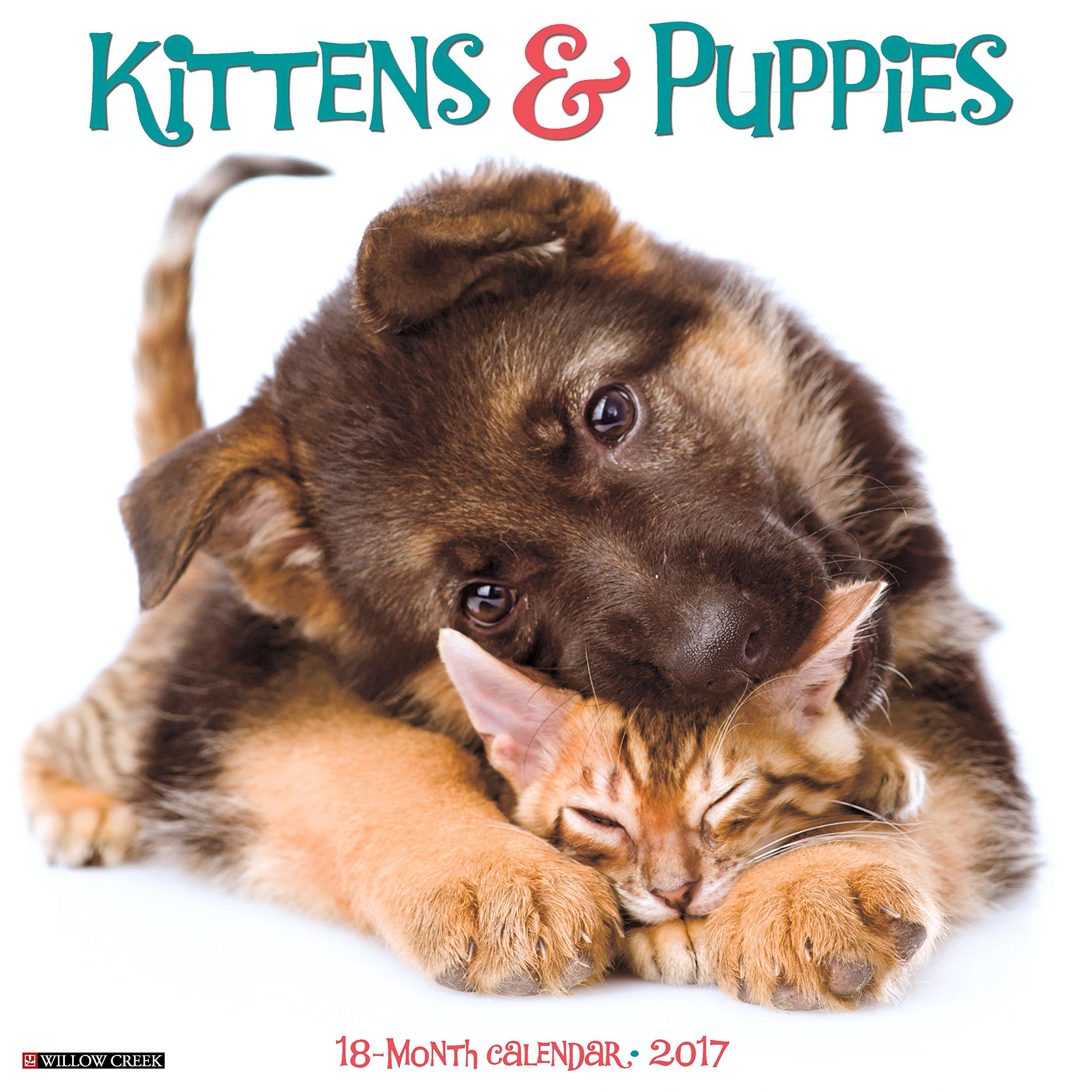 Amazon Kittens & Puppies 2017 Wall Calendar