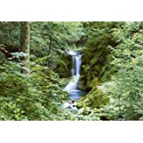 Brewster Waterfall In Spring Wall Mural
