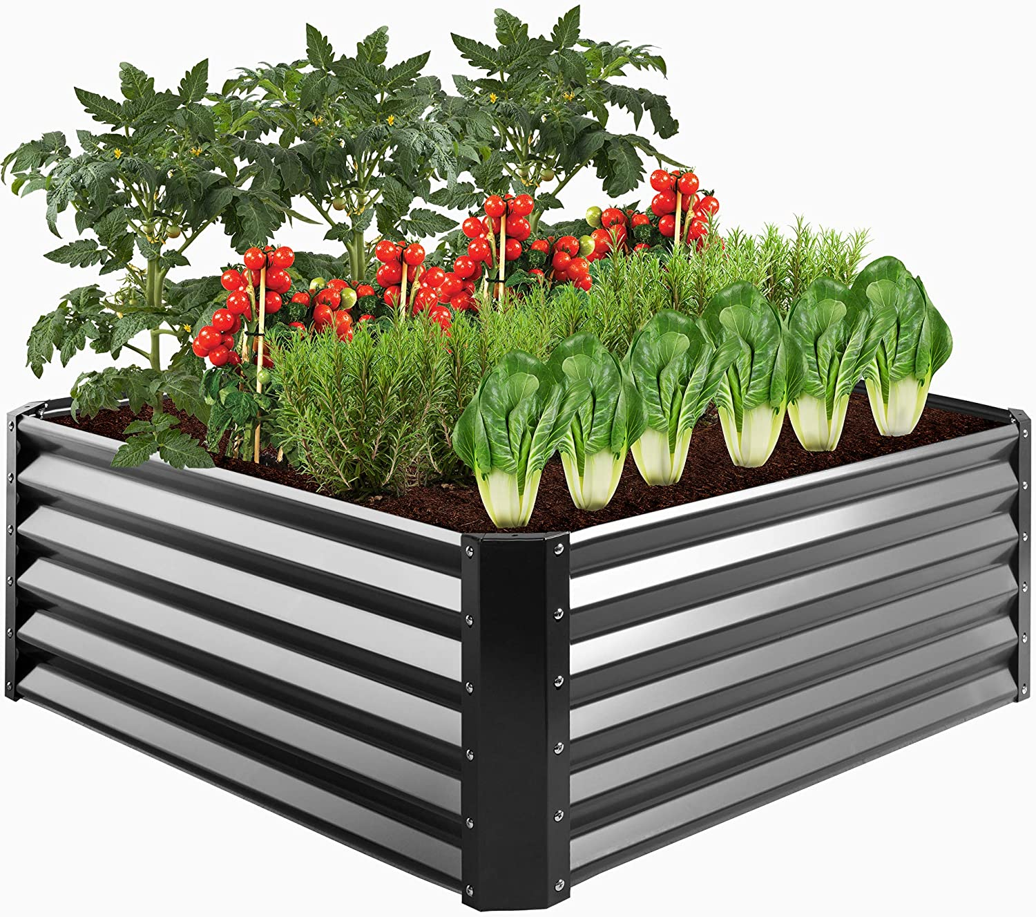 Best Choice Products 4x4x1.5ft Outdoor Metal Raised Garden Bed, Medium Root Box Planter for Vegetables, Flowers, Herbs, and Succulents w/ 179 Gallon Capacity