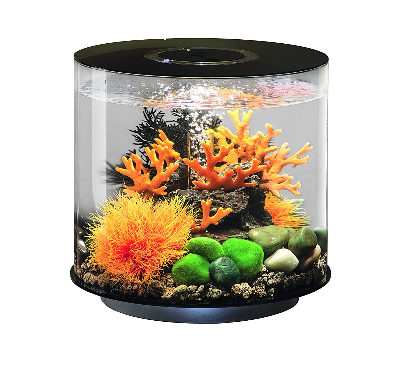 biorb tube aquarium g nstig online kaufen. Black Bedroom Furniture Sets. Home Design Ideas