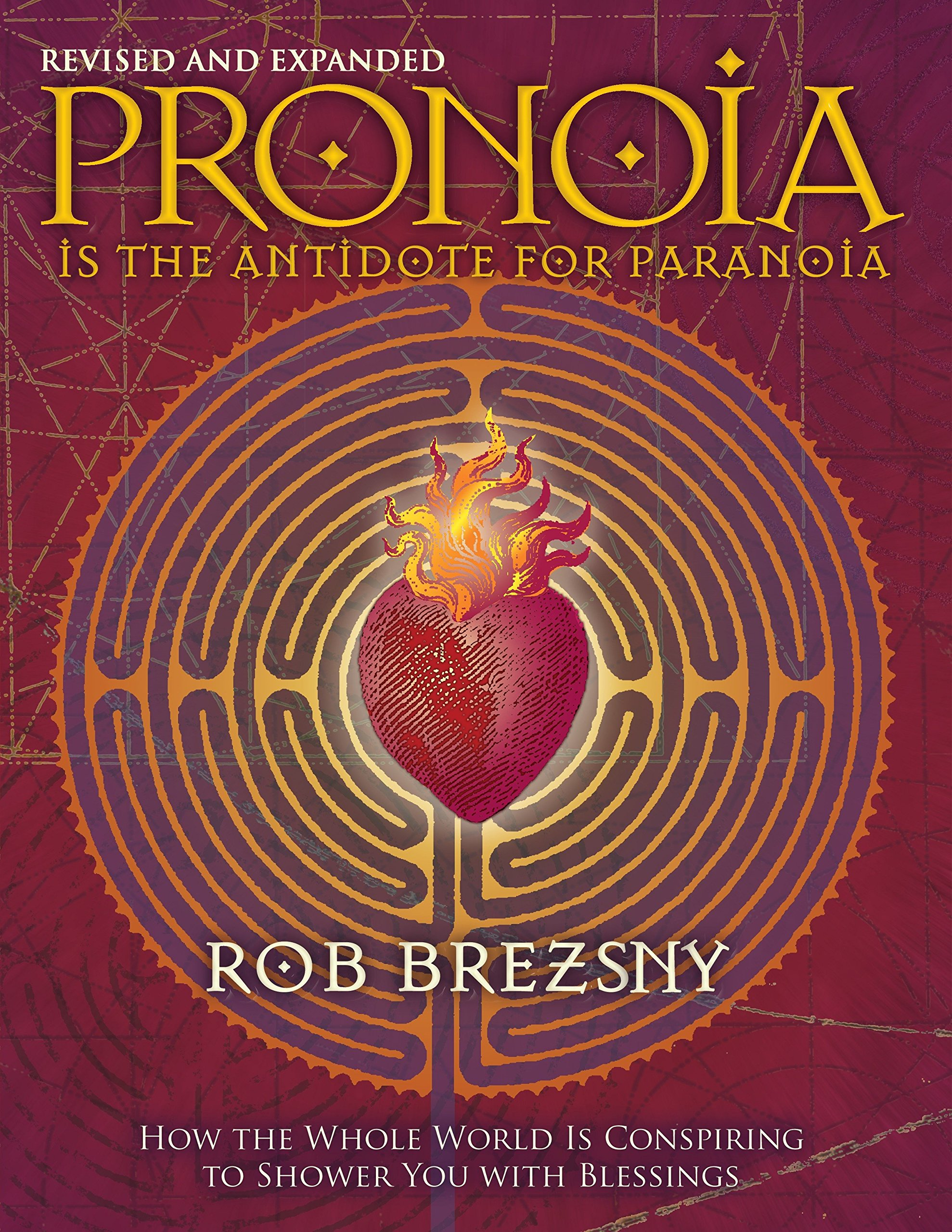 The And For Is Antidote Pronoia ParanoiaRevised ExpandedHow kO8NnP0wXZ