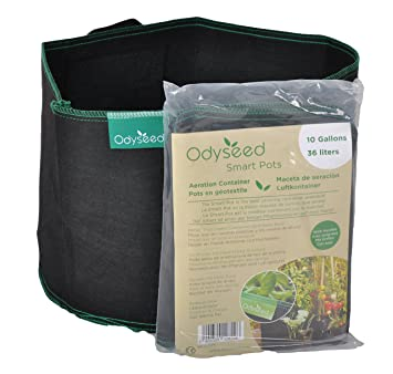 7c97359958d Odyseed smartpots 37.4 Litres - Sheeting for Growing Pots Indoors or  Outdoors  Amazon.co.uk  Garden   Outdoors