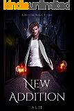 New Addition (A Krystal Blaze Theme Book 1)
