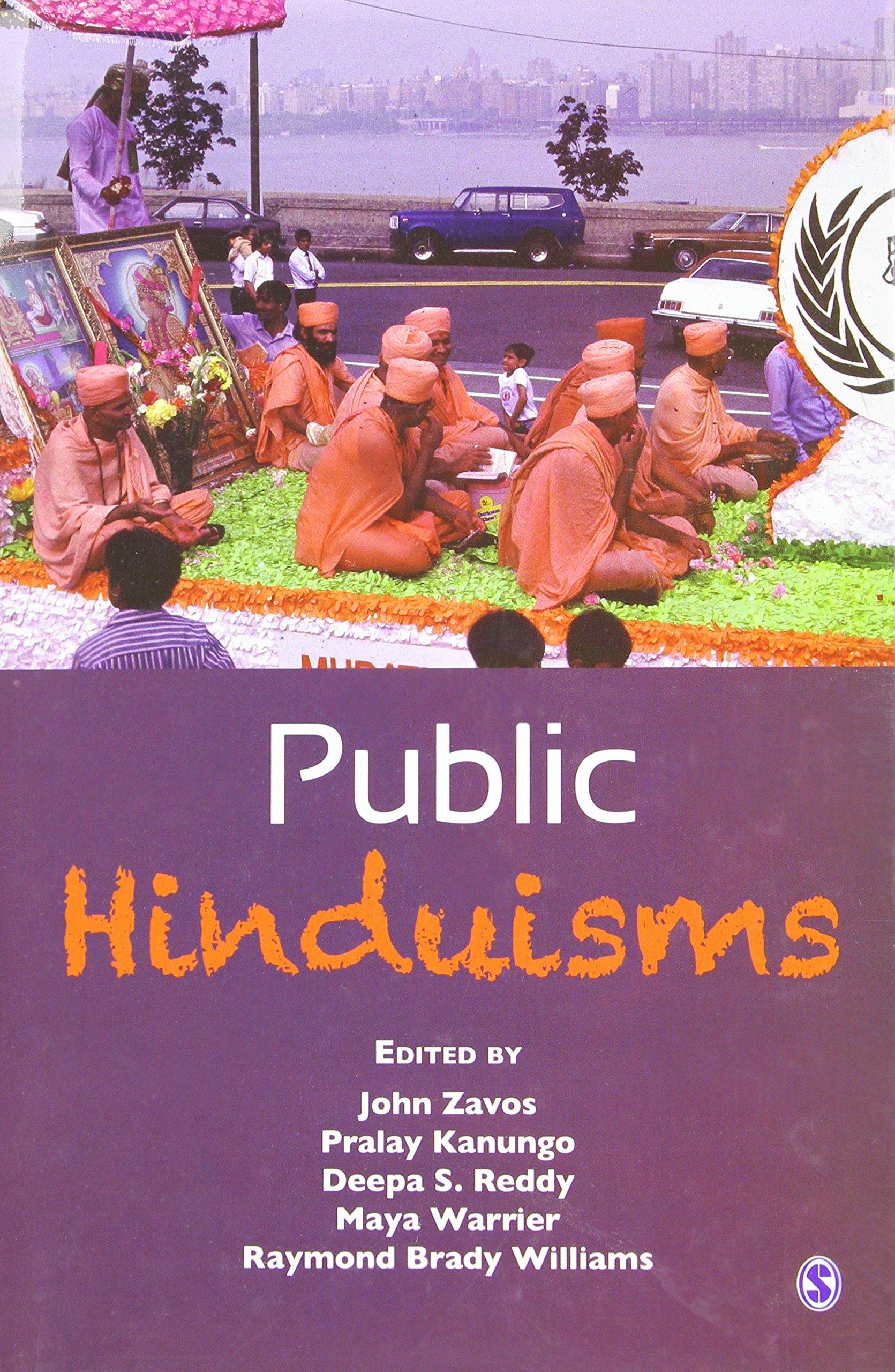 Download Public Hinduisms pdf