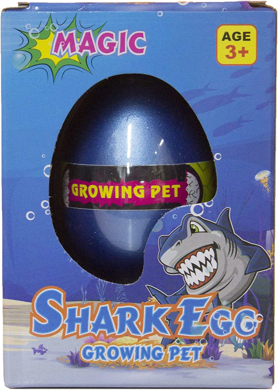 Fun Stuff Grow a Shark - Shark Egg Hatching Pet, Just Add Water