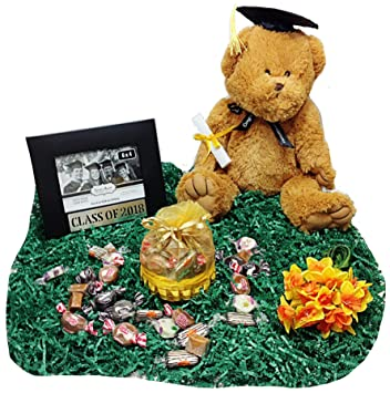 Amazoncom School Graduation Gift Plush Bear Stuffed Animal
