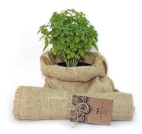 TBG - Sacco di iuta 100% naturale - confezione da 3 sacchetti eco ...