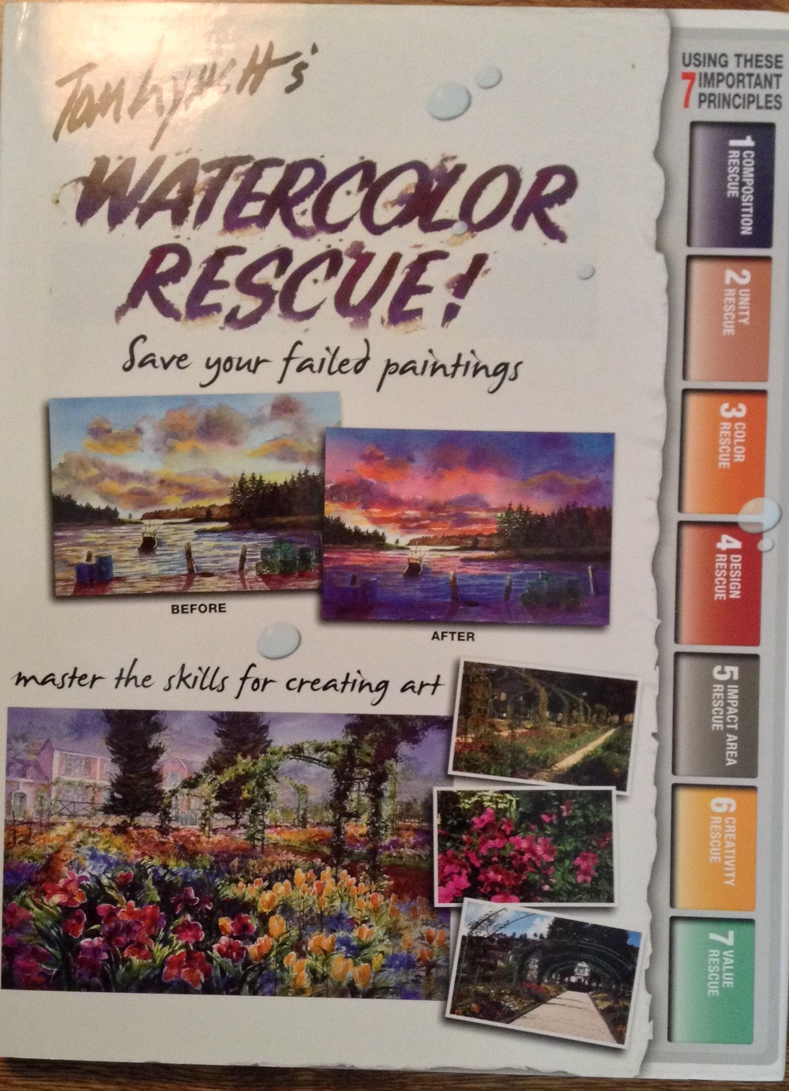 Tom Lynch S Watercolor Rescue Tom Lynch 9781929834624 Amazon Com Books