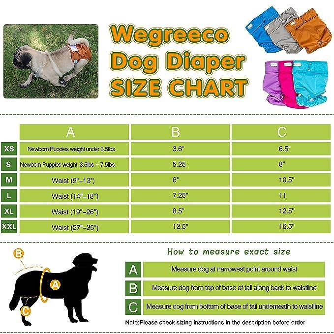 Pañales para perros walmart