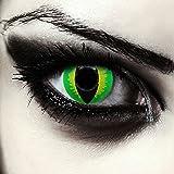 """Lentillas de colores verde para Halloween costume ojo de gato / dragón lentes verdes sin dioprtías / corregir + gratis caso de lente """"Green Dragon"""""""