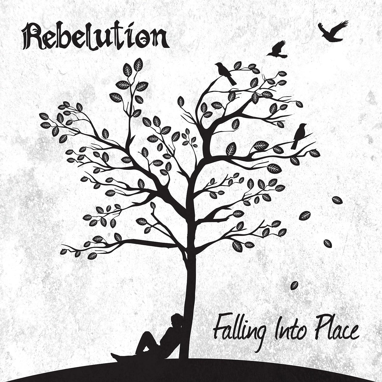 """Résultat de recherche d'images pour """"rebelution falling into place"""""""