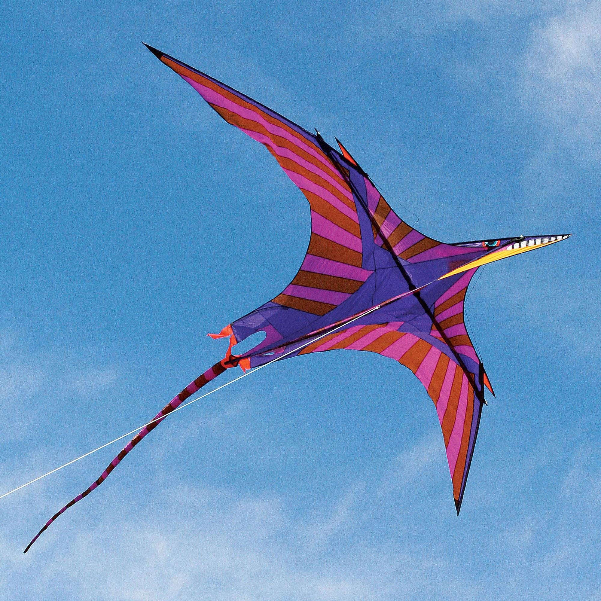 George Peters' Pterosaur Kite by Into The Wind