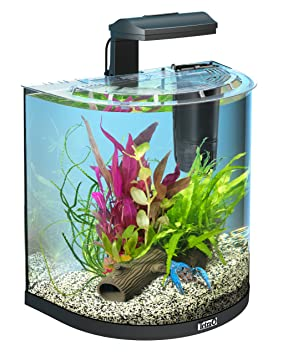 Tetra Aquaart Explorer Line Crab Aquarium Complete Set 30l Amazon