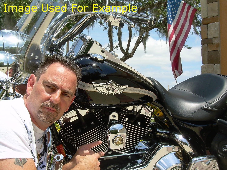 MotorDog69 Dont Tread On Me Harley Horn Cover Coin Mount Set/…/…