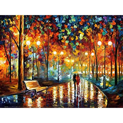 PROW Paintings Night Rain Together with You, Large Format, for Adults, Colorful Intellective Games, Wooden Jigsaw Puzzles, 1000 Piece, Finish Size 30''x20'': Toys & Games