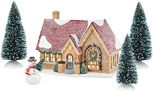 Department 56 First Frost Tangletown Cottage Christmas Figurine Set 4054980 New