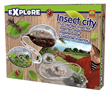 jeux flash insecte