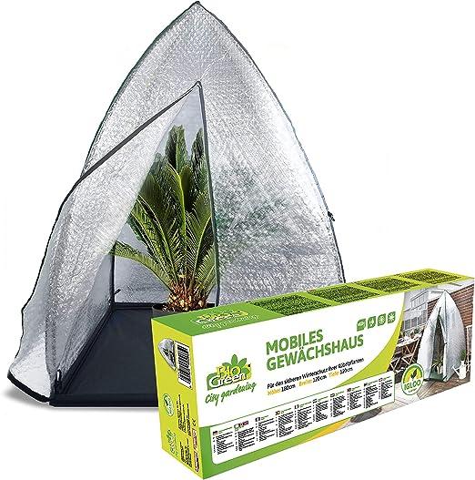 Bio Green - Protector de Invierno para Plantas, 120 x 120 x 180 cm, diseño de iglú, Transparente: Amazon.es: Jardín