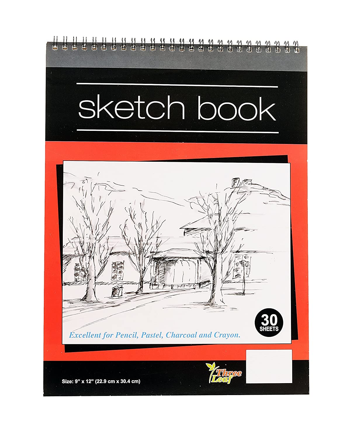 Pastel Excellent for Pencil 1-Sketch Book 9x12-Inch Charcoal and Crayon from Northland Wholesale. 30 Sheets per Book Wired Sketch Book
