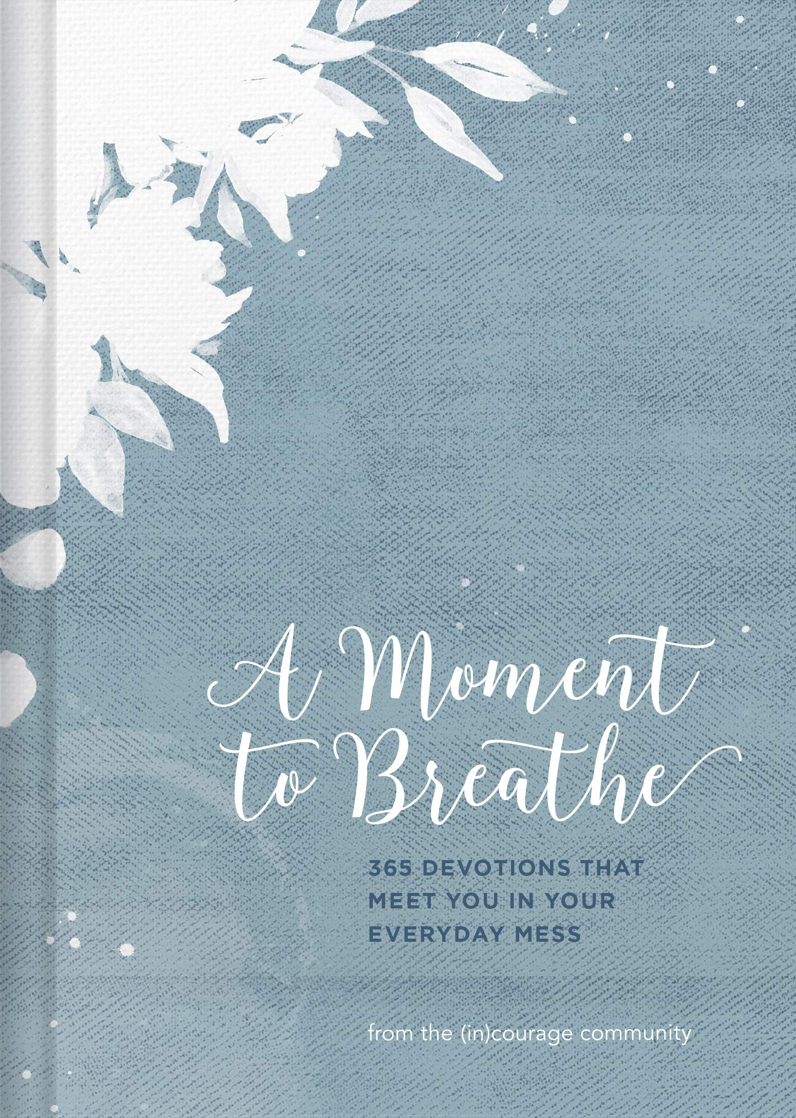 A Moment to Breathe: 365 Devotions that Meet You in Your Everyday Mess ebook