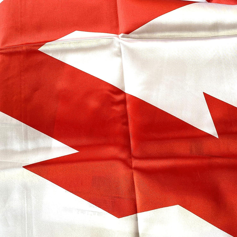 Durabol Gran Bandera de Cruz de Borgoña 150 x 90 cm: Amazon.es: Hogar