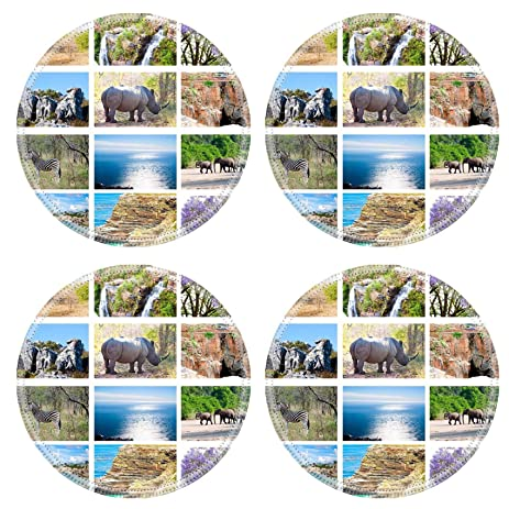Liili Round Coasters IMAGE ID 17291233 African Wild Animals Collage Fauna Diversity In Kruger Park Natural