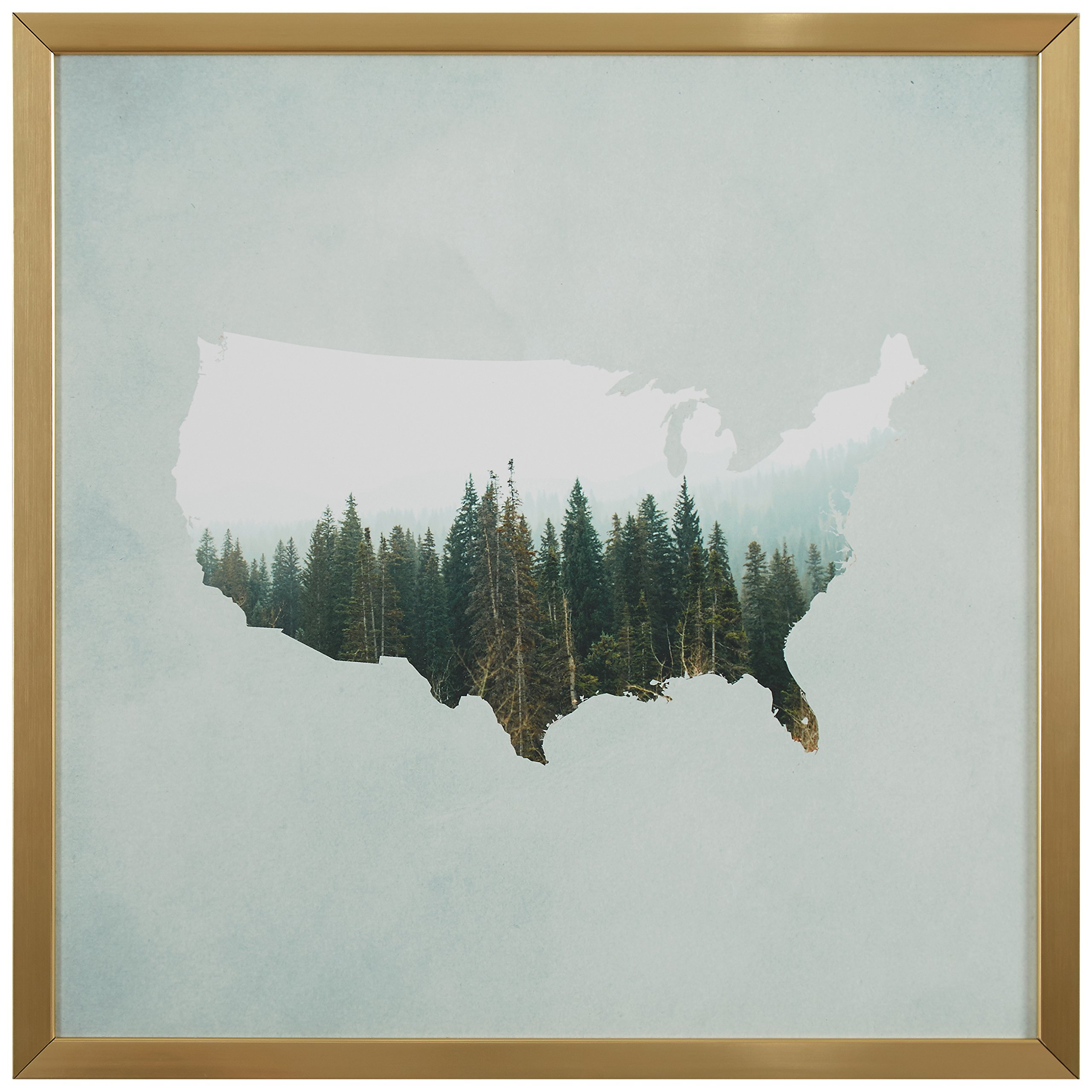 American Forest Map Print in Gold Wood Frame, 12'' x 12''