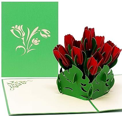 Pop Up - Tarjeta de felicitación 3D con 9 tulipanes rojos ...