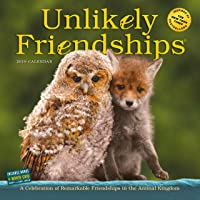 2019 Unlikely Friendships Wall Calendar