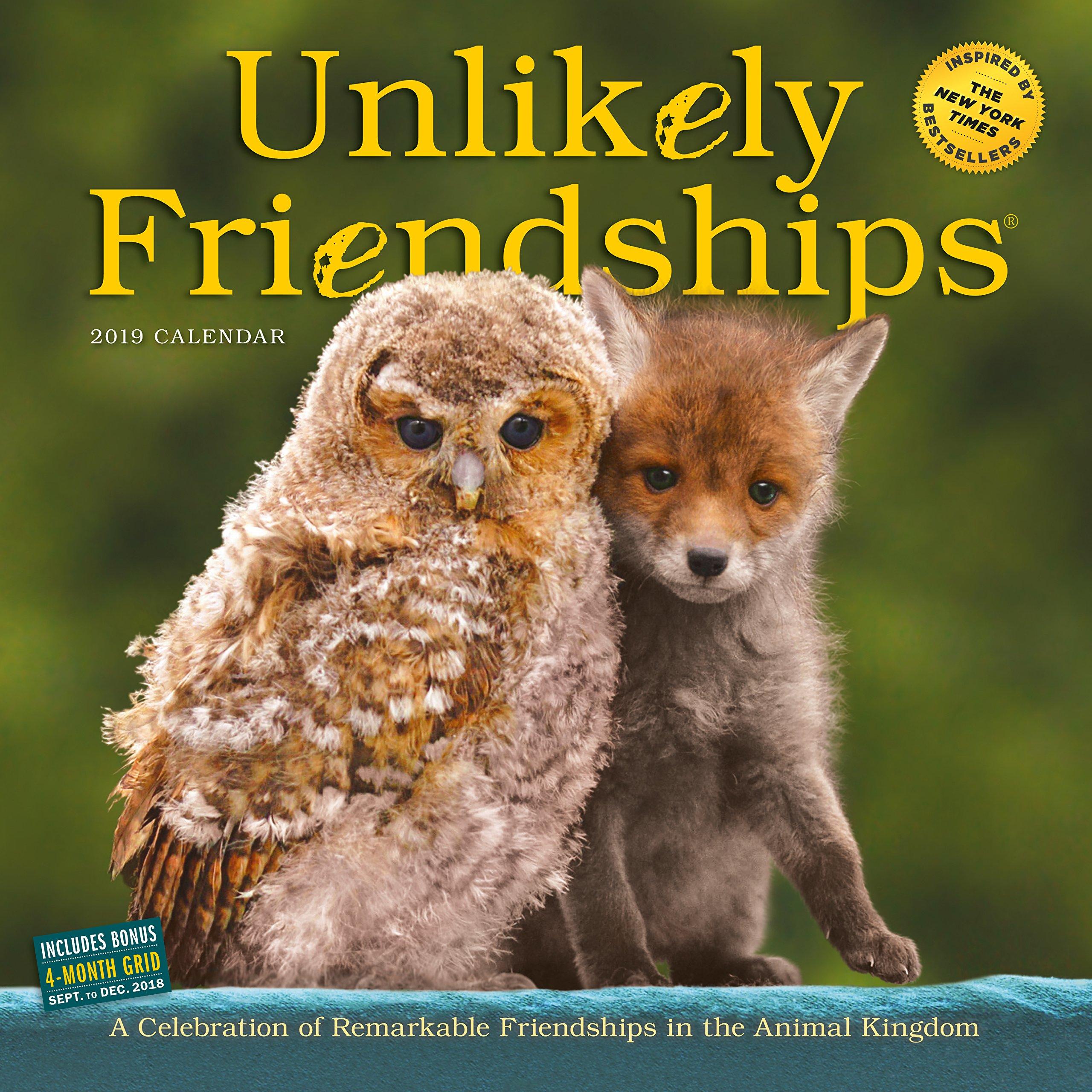 Read Online Unlikely Friendships Wall Calendar 2019 pdf epub